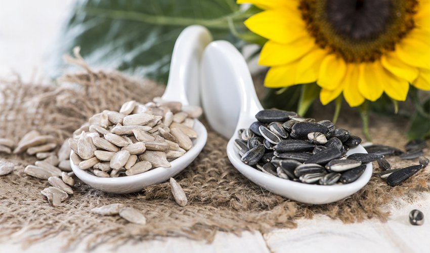 Ce seminte sant bune la menopauza