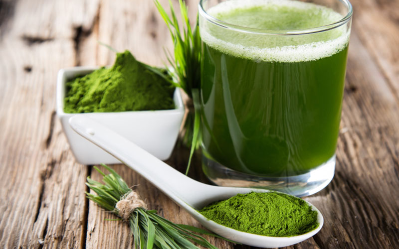 Plante bune pentru menopauza